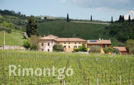 Country house - finca for sale in Verona City, Italy