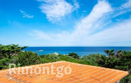 Apartments and homes for sale in Portobello di Gallura, Gallura, Italy