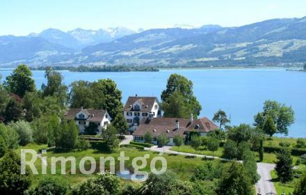Apartments and homes for sale in Uerikon, Zurich, Switzerland