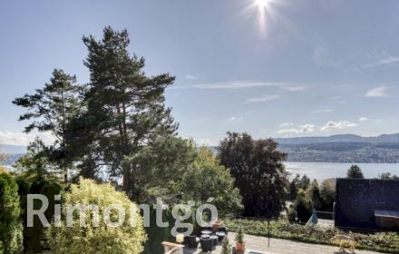 Apartments and homes for sale in Herrliberg, Zurich, Switzerland