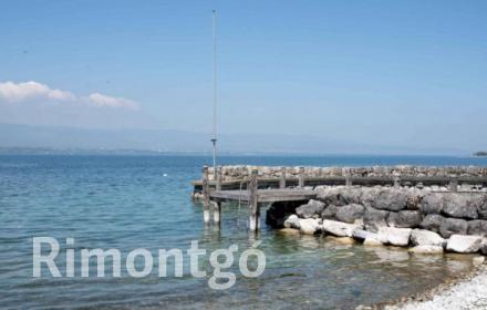 Apartments and homes for sale in Anières, Geneve, Switzerland