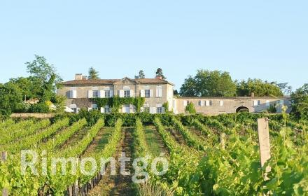 Luxury apartments and homes  for sale in Bordeaux, Gironde, France