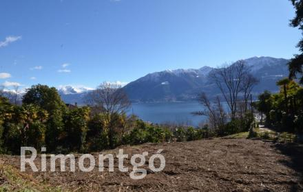 Apartments and homes for sale in Orselina, Ticino, Switzerland